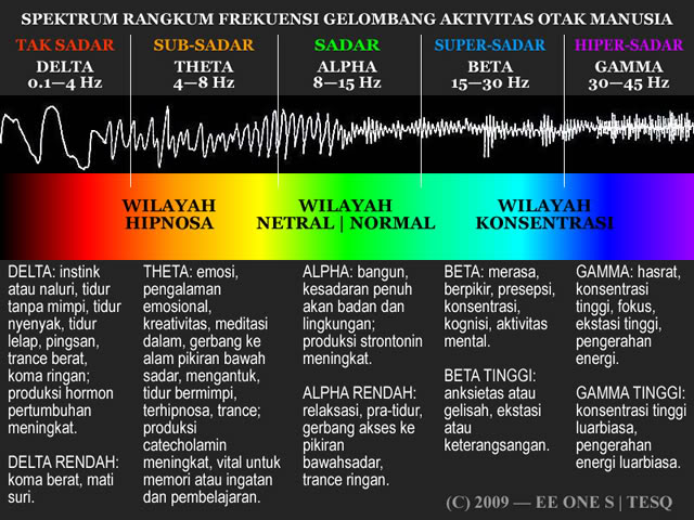 brain-spectrum-wob-640x480