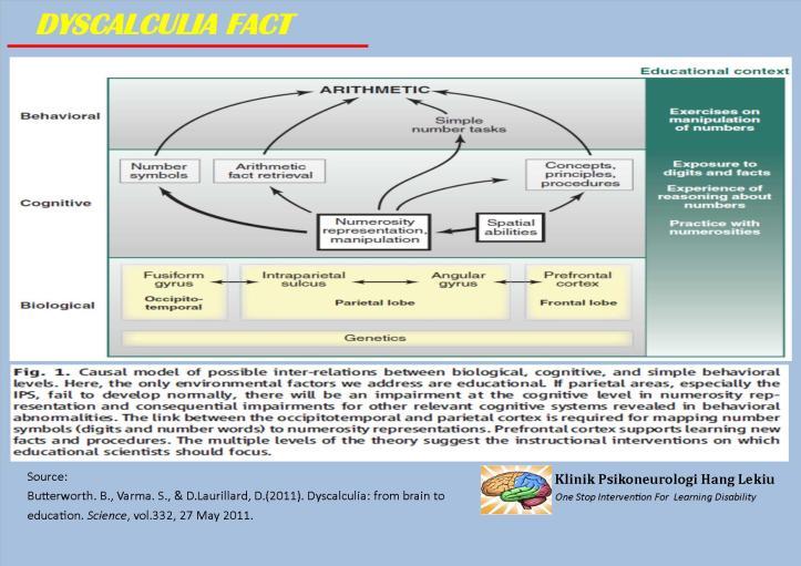 model-dyscalculia